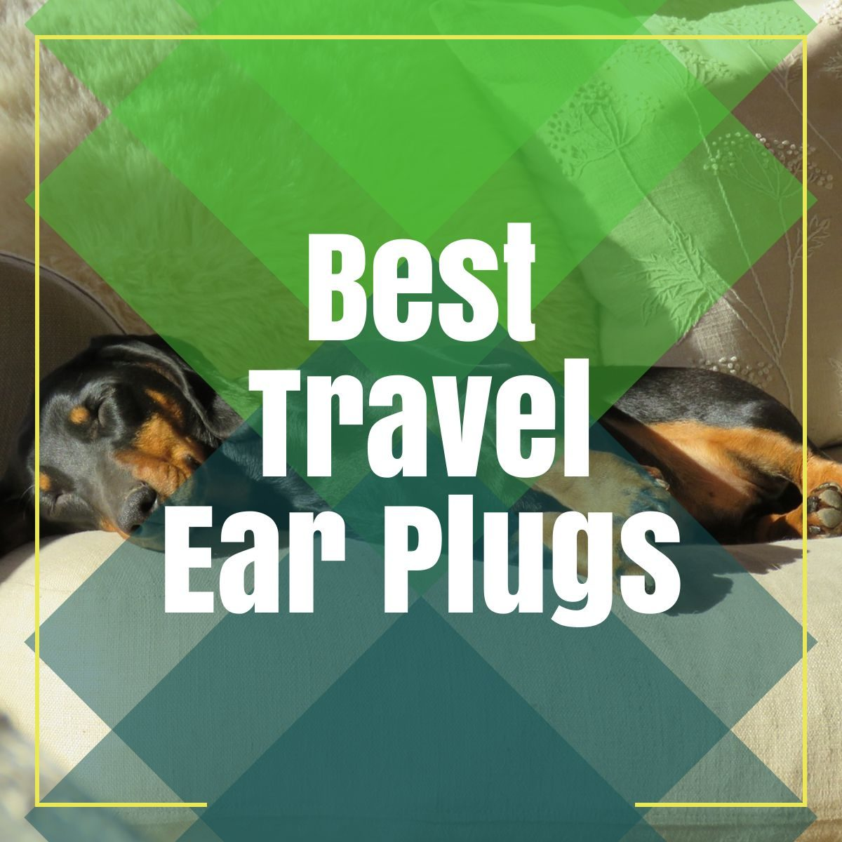 travel earplugs the professional traveller