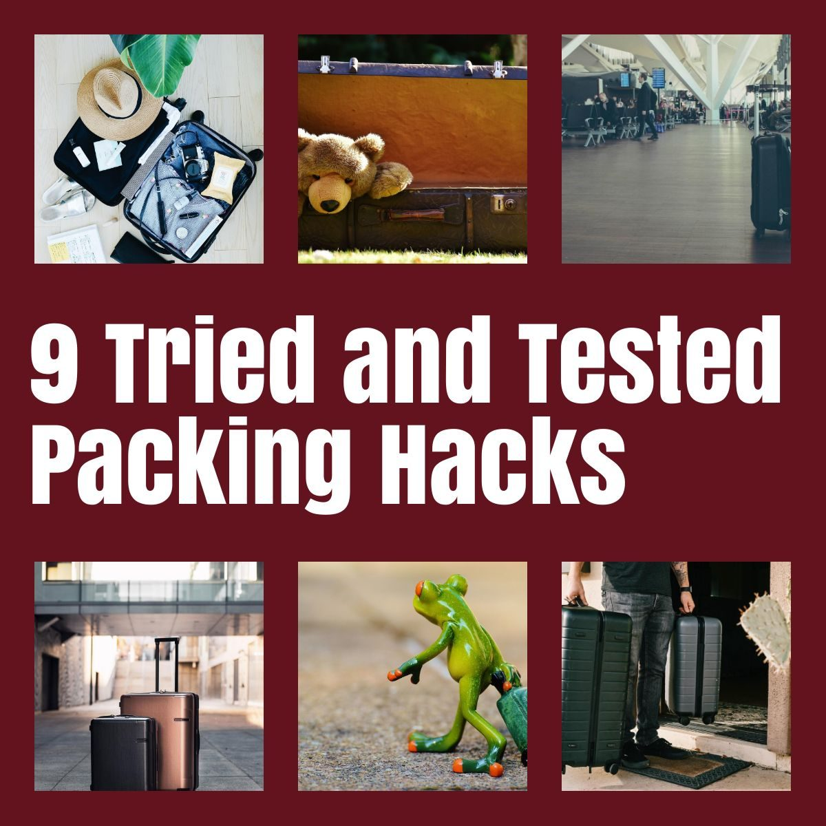 packing hacks the professional traveller