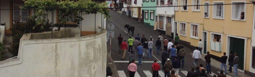 rope bullfighting azores holidays the coach holiday expert #thecoachholidayexpert