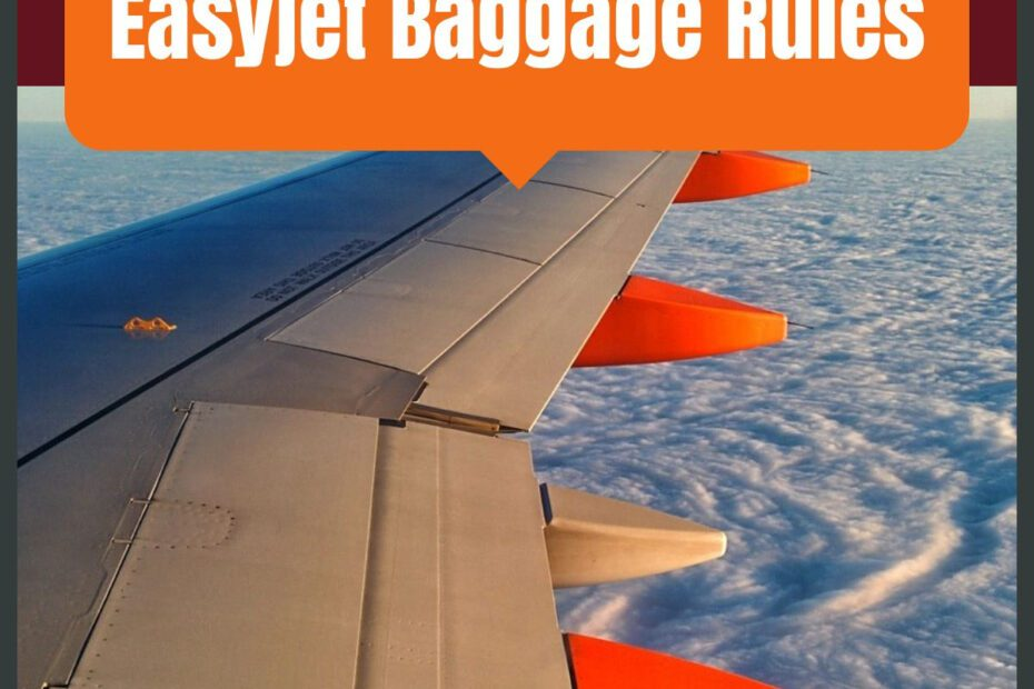 easyjet baggage the professional traveller