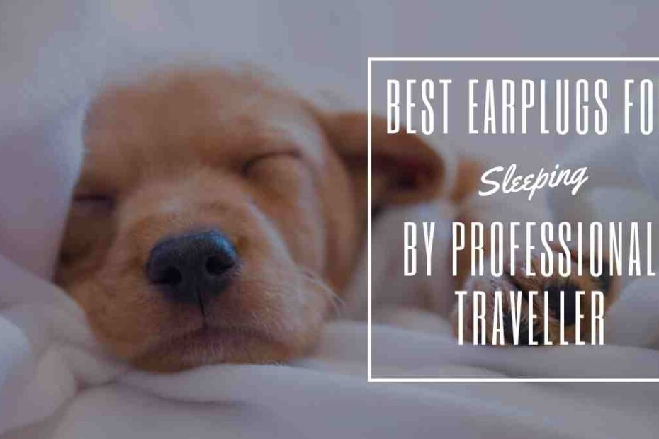 best earplugs for sleeping the professional traveller