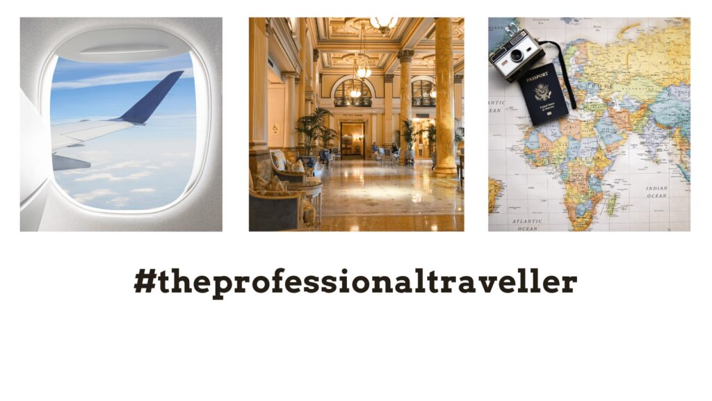 the professional traveller homepage header image