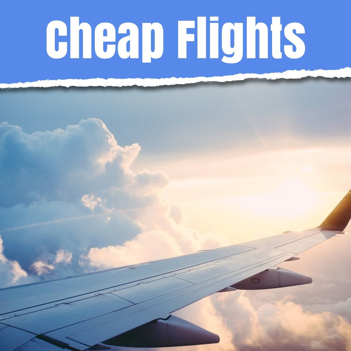 cheap flights the professional traveller media and text image