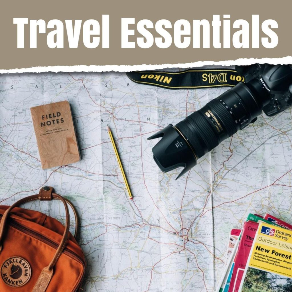 travel essentials the professional traveller media and text image