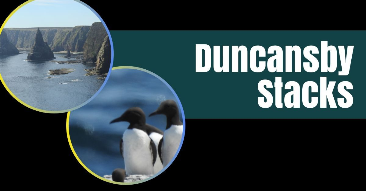 duncansby stacks featured image the professional traveller