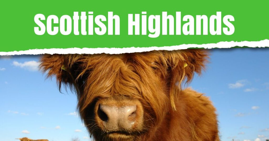 green list travel 2021 scottish highlands the professional traveller
