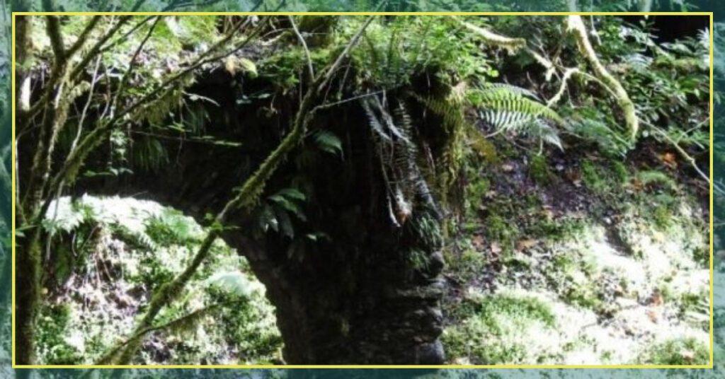 reelig glen the professional traveller grotto