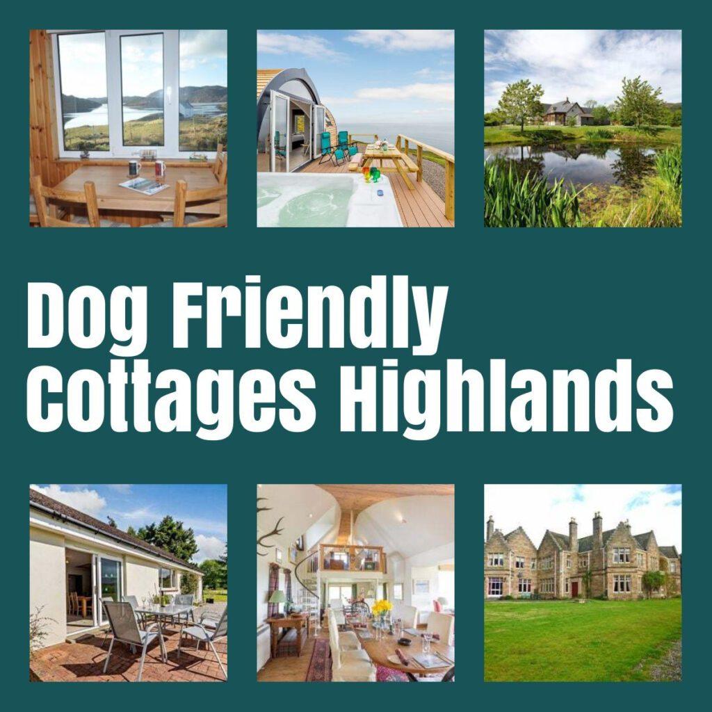 dog friendly holiday cottages highlands the professional traveller