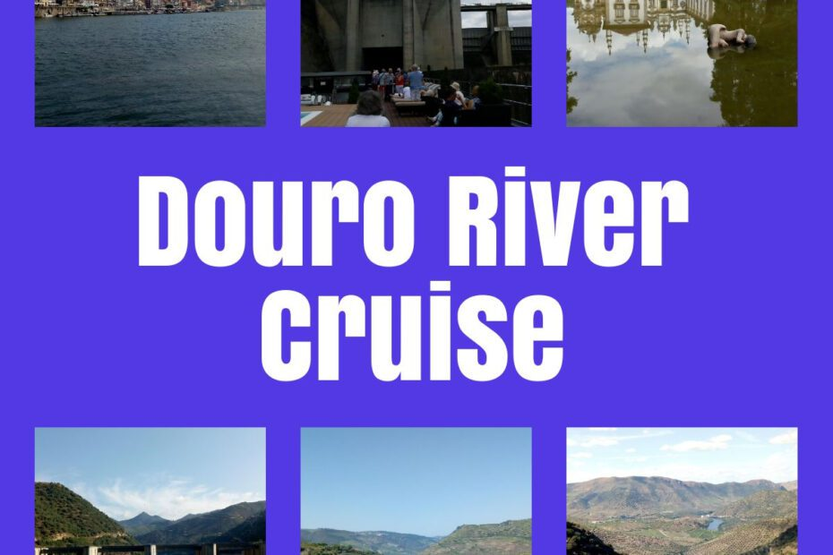 douro river cruise the professional traveller